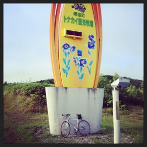 トナカイ牧場までサイクリング