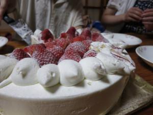 お祝いケーキ。まじでかい!w