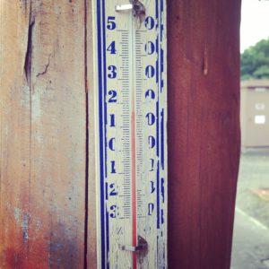 朝7時で気温16度ですよ!