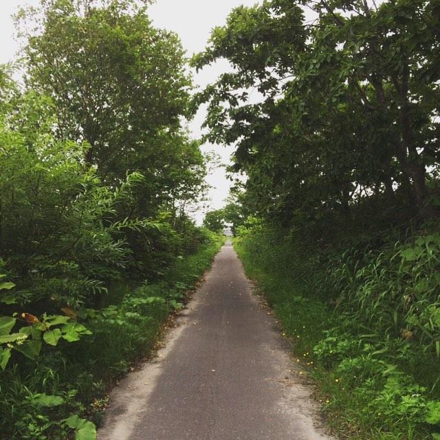 バイパス手前の一本道。ひたすらまっすぐ。