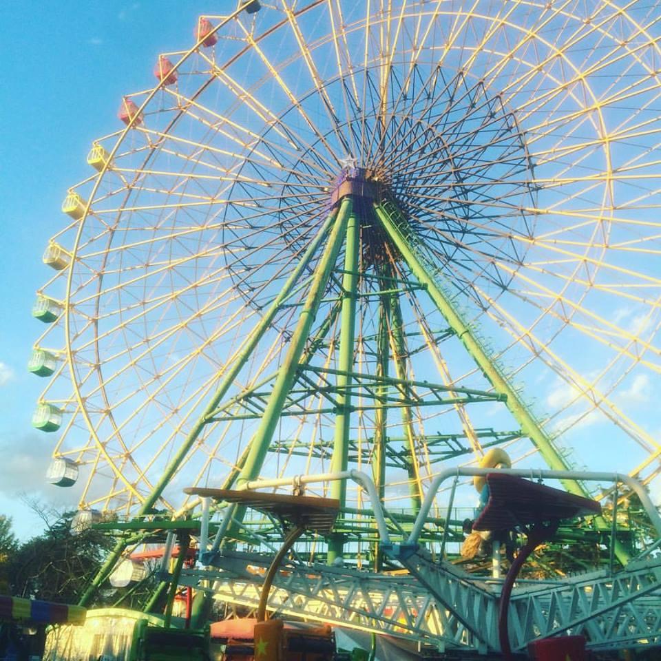 華蔵寺公園の観覧車