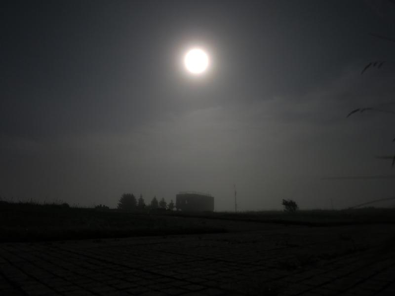 濃霧の中の大規模草地のレストハウス